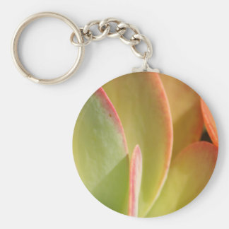 Sonnenuntergang-Kaktus 3 keychain Schlüsselanhänger