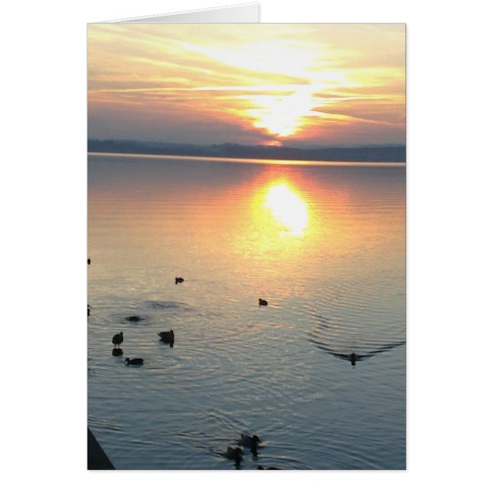 Sonnenuntergang mit Enten im See,Grusskarte,blanko Karte