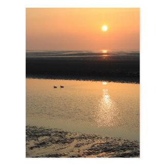 Sonnenuntergang - neues Brighton Postkarte