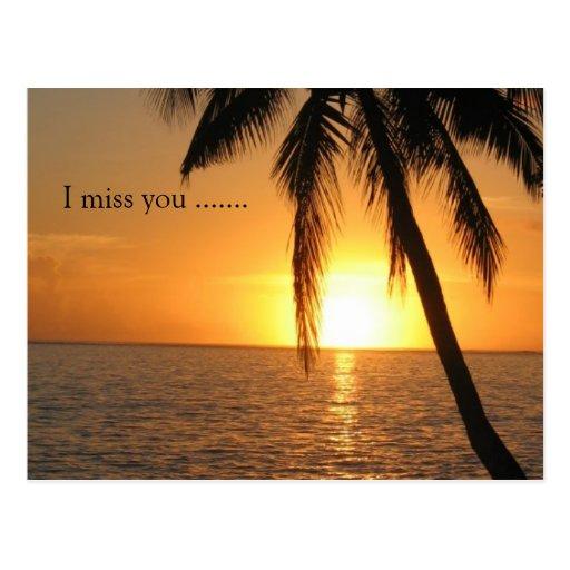 Sonnenuntergang-Palm- BeachfriedensLiebe-Schicksal Postkarte