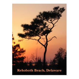 Sonnenuntergang Rehoboth Postkarte