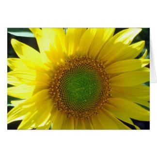 Sonnige gelbe Sonnenblume-Anlass-Karte Grußkarte