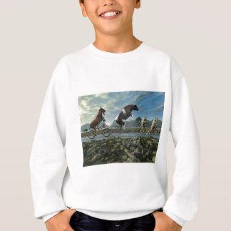 Sonntags-Fahrt Sweatshirt