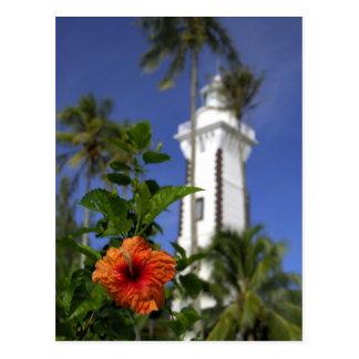 South Pacific, Polynésie française, Tahiti. Ketmie Cartes Postales