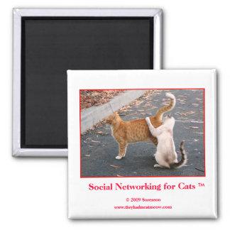Sozialvernetzung für Katzen-Magneten Quadratischer Magnet