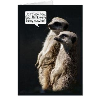Spaß-Geburtstags-Karte mit Meerkats - Humor Karte