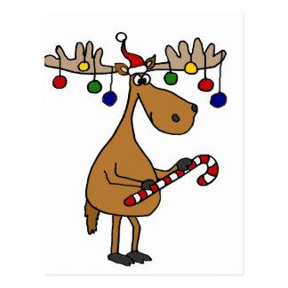 Spaß-Weihnachtselche mit Zuckerstange und Postkarte