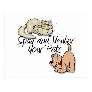 Spay und neutralisieren Sie Ihre Haustiere Postkarte