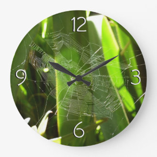Spiderweb in der tropisches Blätter-grünen Natur Uhren