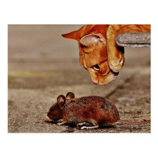 Spielerische orange Tiger-Katze mit einer Maus Postkarte