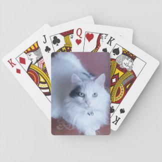Spielkarten des weißen flaumigen Katzenspaßes