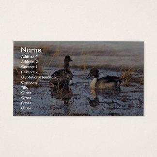 Spießenten-Enten-Paare Visitenkarte