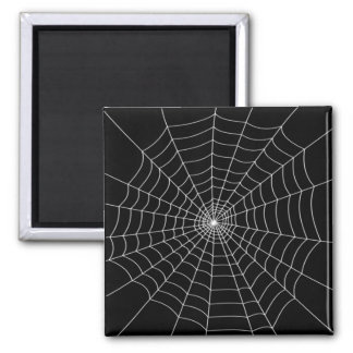 Spinnen-Netz Quadratischer Magnet