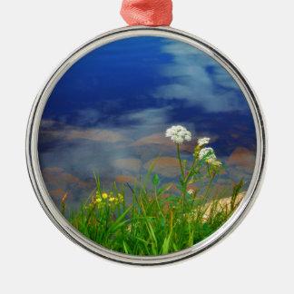 Spitze-Blumen der Königin Anns, blauer Gebirgssee Silbernes Ornament