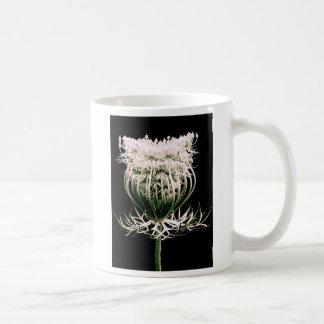 Spitze der Königin-Anne Kaffeetasse
