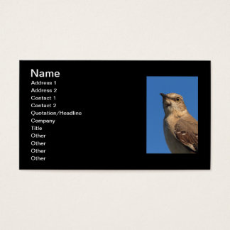 Spottdrossel-Porträt Visitenkarte
