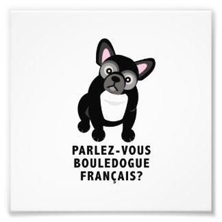 Sprechen Sie die französische niedliche Bulldogge Fotodruck