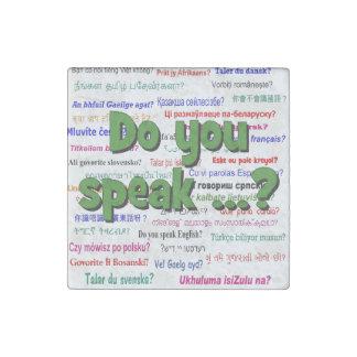 Sprechen Sie…? Fragen- und Hintergrundgrün Stein-Magnet