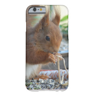 Squirrel ~ Écureuil ~ Eichhörnchen  ~ by GLINEUR Barely There iPhone 6 Hülle