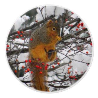 Squirrel im Schnee 6234 Keramikknauf