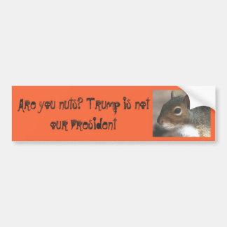 Squirrelly sind Sie Nuts! Trumpf ist nicht unser Autoaufkleber