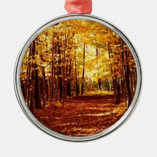 St- Josephinsel-Fall-Farben Silbernes Ornament