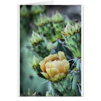 Stachelige Birnen-Kaktus-Blume Karte