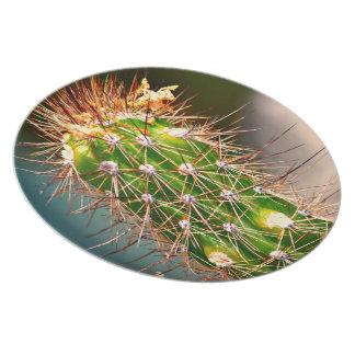 Stachelige Kaktus-Melamin-Platte Melaminteller