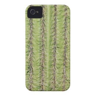 Stacheliger Kaktusdruck iphone 4 Fall iPhone 4 Hüllen