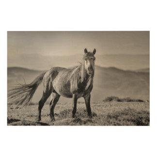 Stallion Holzleinwand