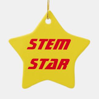 STAMM Stern-Verzierung Keramik Stern-Ornament