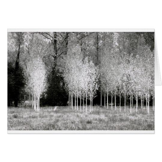 Stände der Bäume Grußkarte