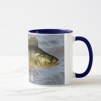 Stangen-Frischwasserfische, mit Wasser-Hintergrund Tasse