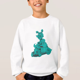 Stangenkaninchenaqua Sweatshirt