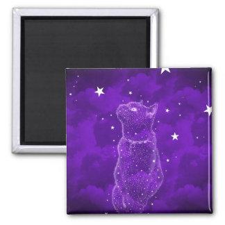Stargazing Katzen-Magnet Quadratischer Magnet