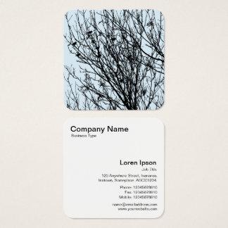 Starlings in einem Baum - Schwarzes auf hellblauem Quadratische Visitenkarte