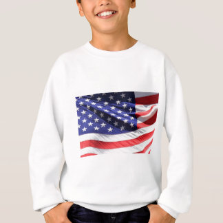 STARS-N-STRIPES SWEATSHIRT