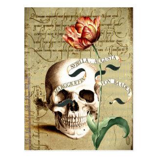 Steampunk Schädel-Blumenschreibens-Postkarte Postkarte