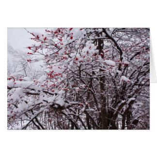 Stechpalmen-Beeren-Feiertags-Karte Grußkarte