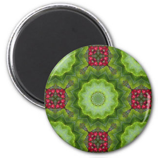 Stechpalmen-Beeren-kaleidoskopischer Runder Magnet 5,1 Cm