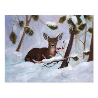Stechpalmen-Beeren-Rotwild-Postkarte Postkarte
