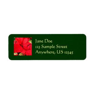 Stechpalmen-Punkt-Poinsettia-Weihnachtsfeiertag