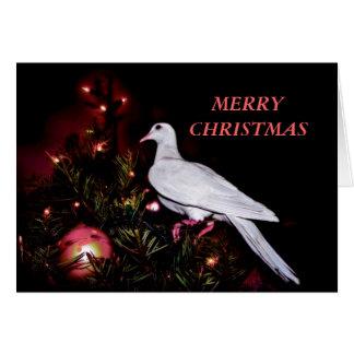 Stella erste Weihnachtskarte Karte