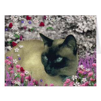 Stella in den Blumen I, Schokolade u. siamesische Karte