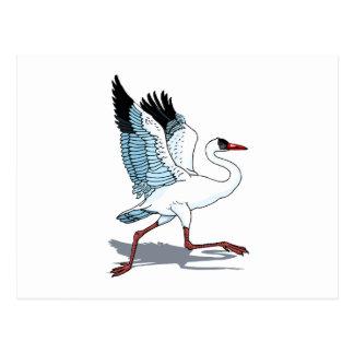 Stella-Storch Postkarte