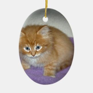 Stelle auf diesem Kätzchen Ovales Keramik Ornament