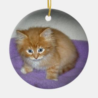 Stelle auf diesem Kätzchen Rundes Keramik Ornament
