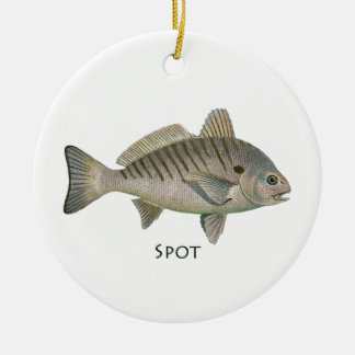 Stellen-Fische Keramik Ornament