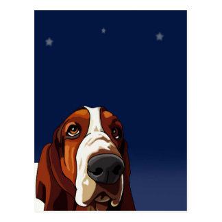Stern, der Jagdhund anstarrt Postkarte