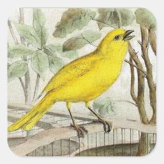 Sticker Carré Illustration vintage jaune canari